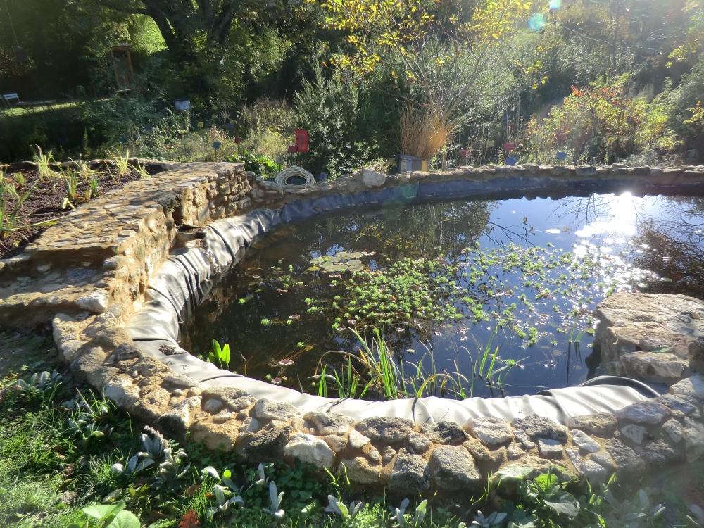 La marre, avec poissons et plantes oxygénantes.