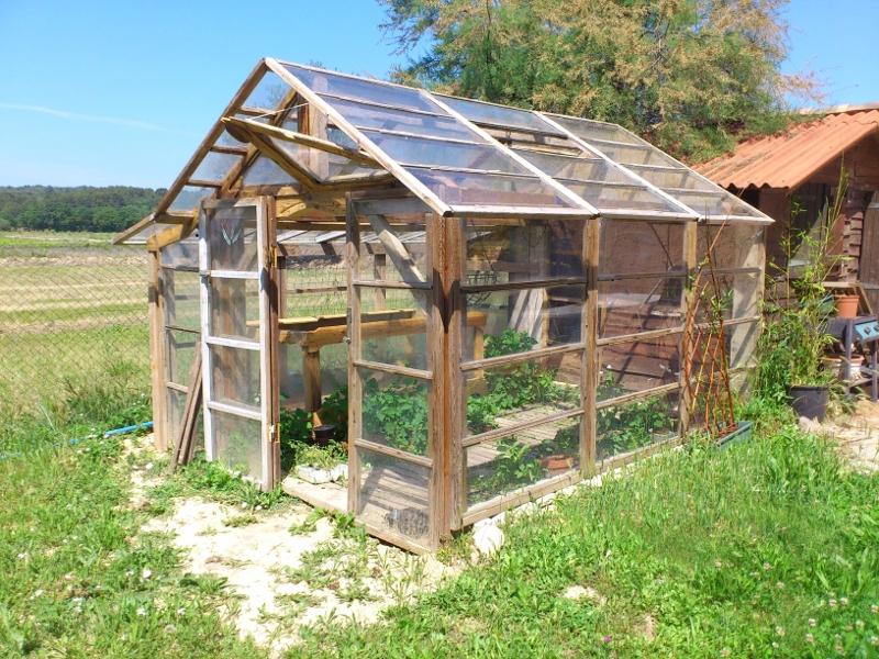 Une serre en verre. Panneaux de récup agricole
