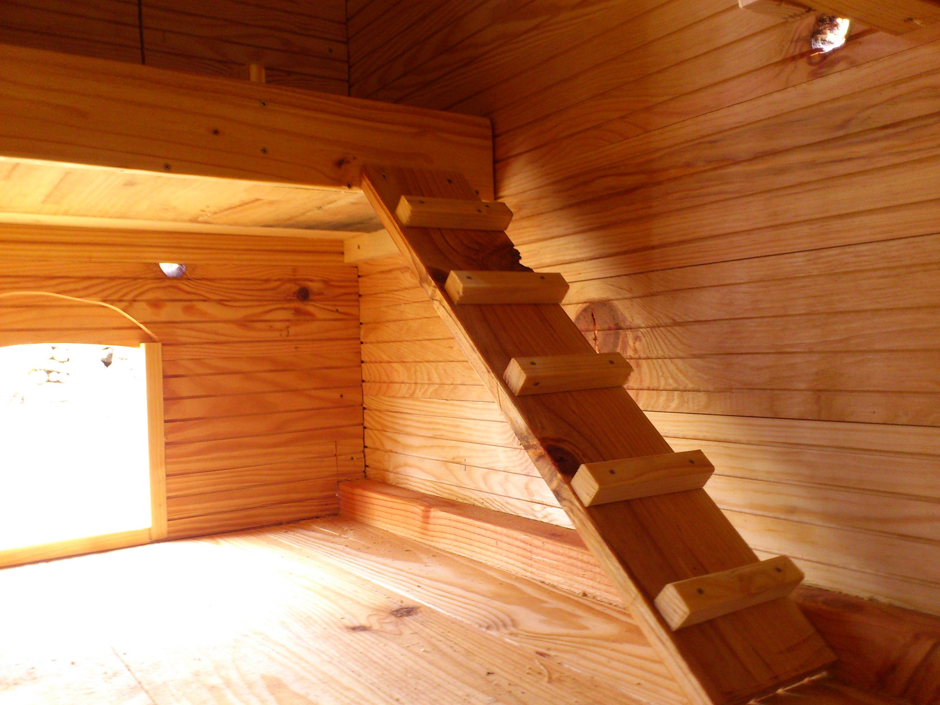 Intérieur, avec la petite échelle pour monter dans les pondoirs.