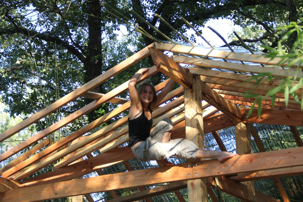 Cloutage des bambous, c'est acrobatique comme opération !